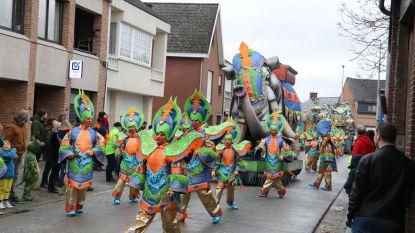 Moesenezen winnaar van Moerzeke carnaval