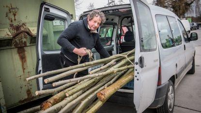 Stad-land-schap 't West-Vlaamse hart deelt gratis wilgenpoten uit