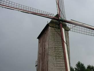 Stalijzermolen zal na restauratie opnieuw malen