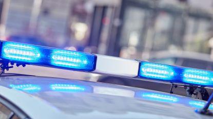 Dief maakt rechtsomkeer tijdens politieachtervolging op E411 en knalt tegen boom
