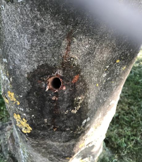 Beloning van 3000 euro die leidt tot vernieler van drie bomen in Gemen