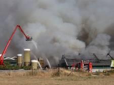 Haalt de Didamse brandweer straks nog katjes uit de bomen?