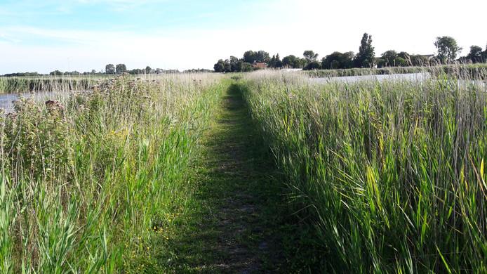 Cleene Hooge moet ook bebouwd worden om in 2025 een financieel gezond grondbedrijf te krijgen.
