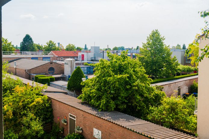 Het bedrijf MSD in de Ambachtsstraat in De Bilt wil weer uitbreiden.  Een deel van de buurt is er niet blij mee. De kwestie leidt ook tot politieke verdeeldheid.