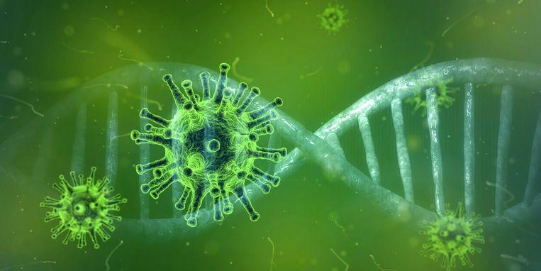Het Lentefeest in Zelzate werd afgeschaft door het coronavirus.