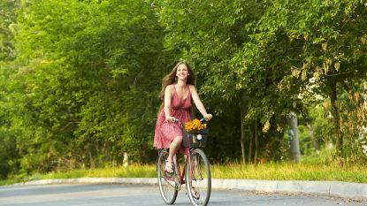 Fietseling leidt fietsers langs mooiste plekjes van Merksem