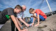 Meer dan 1.000 Lommelaren doen mee aan zesde Stadspuzzel