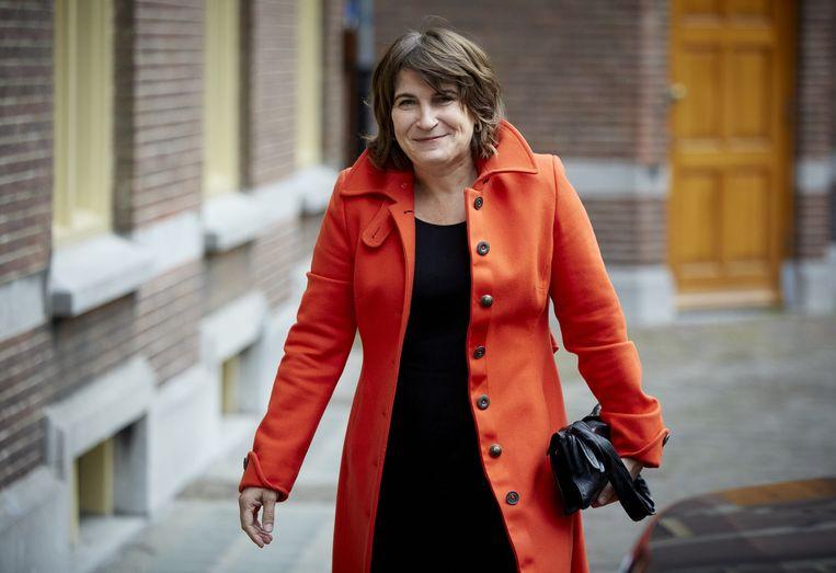 Minister Lilianne Ploumen Beeld anp