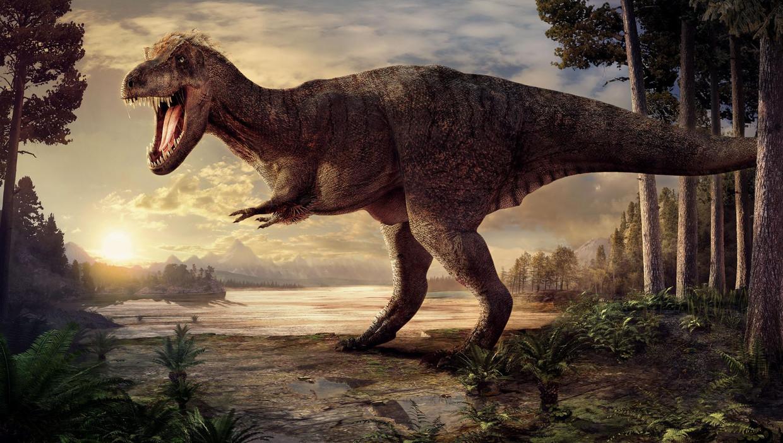 Onderzoek: Tyrannosaurus rex was geen 'reusachtige horrorpino'   De Volkskrant