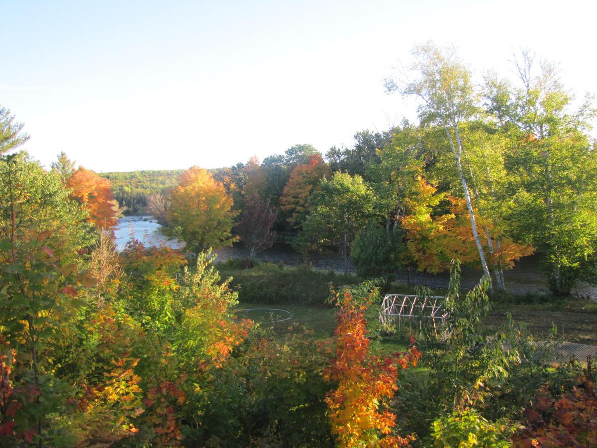 De natuur van New Brunswick is prachtig.