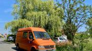 Grote cannabisplantage met 2.500 planten aangetroffen in afgelegen woning