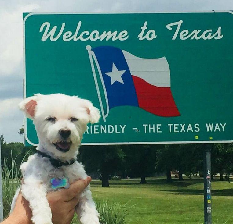 Bentley weer thuis in Texas!