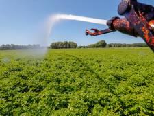 Waarschuwingen en boetes voor sproeien tijdens droogterecord in Oost-Nederland