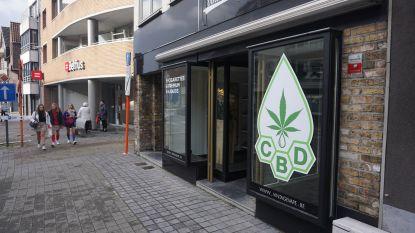"""En plots heeft Gistel niet één, maar twee 'wietwinkels': """"Perfect legaal, maar reclame met cannabisplanten moet weg"""""""