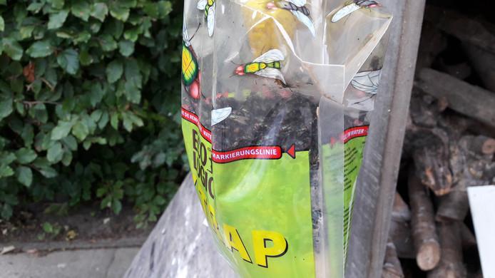 Inwoners van Nieuwdorp kregen eerder vliegenvallen van de gemeente Borsele. Daar zit een lokstof in waar de vliegen op af komen.