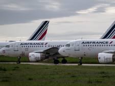 """La survie d'Air France-KLM n'est pas """"automatique"""""""