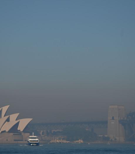 Sydney bedekt met dikke deken van rook; brandweer zet zich schrap