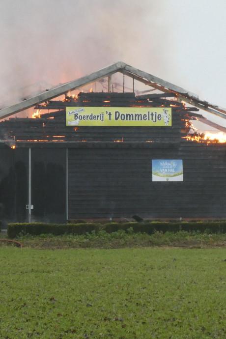 Tranen bij personeel 't Dommeltje na hevige brand: 'Vreselijk. Het is allemaal verloren'