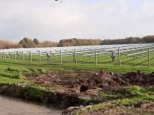 Bouw van zonnepark in Daarle stilgelegd: 'Dit plan met 17.500 zonnepanelen maakt het dorp in één klap energieneutraal'