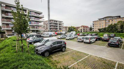 Meer parkeerplaatsen nodig in centrum