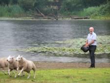 'Loopgravenoorlog' om groengebied Holthuizen