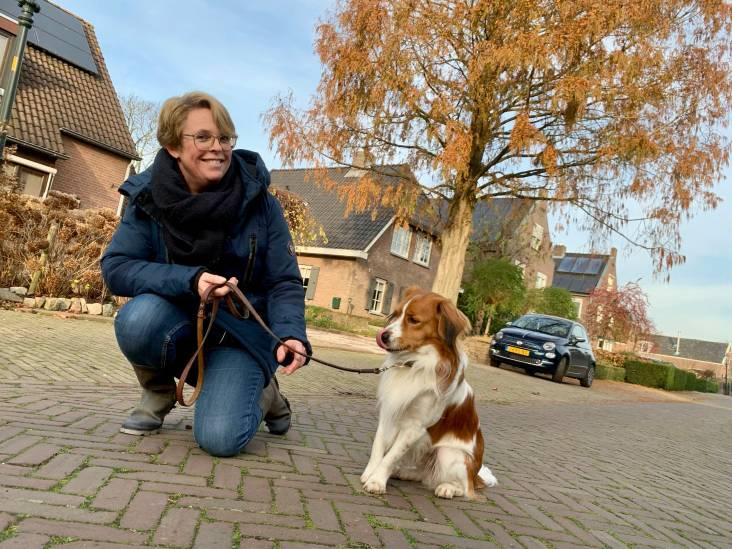 Wandelen in Asperen: 'Kooiker Toby is lief maar ook erg eigenwijs'