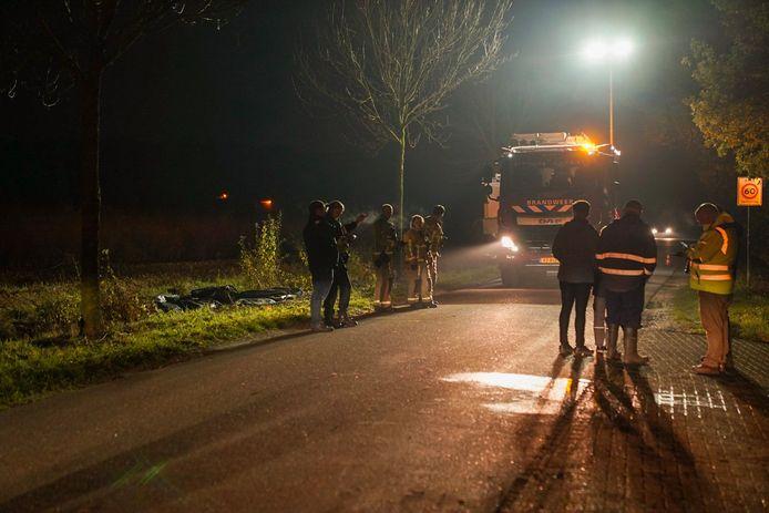 Een paard is overleden na een botsing met een motor.