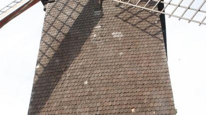 Lindenmolen wordt deze zomer hersteld