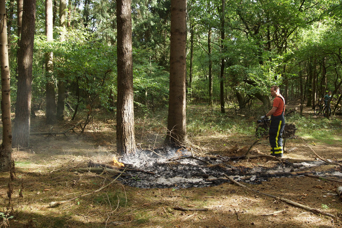 Een mountainbiker ontdekte zondagmiddag een klein bosbrandje in de omgeving van Loon op Zand.