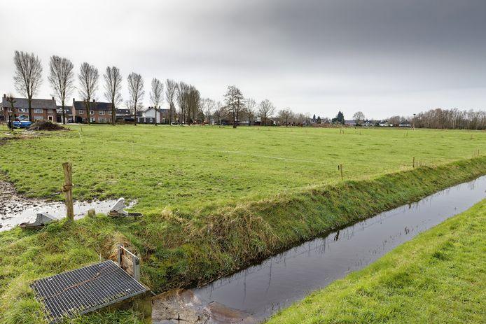 Raadslid Christien van Schijndel verzet zich tegen het plan van vier grote woningen aan de Postelstraat in Esch, net buiten de bebouwde kom.