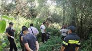 Toeriste meldt in telefoontje naar thuisfront dat honden haar aan het aanvallen zijn in Griekenland. Drie dagen later wordt ze dood aangetroffen