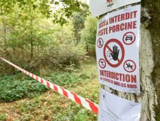 Varkenspestbossen in Luxemburg gaan weer open voor wandelaars