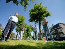'Regenwormen en bodemverbetering redding meeste lindes Lasondersingel in Enschede'