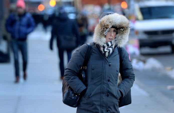 In 2013 werd het flink koud in New York na een splitsing van de poolwervel.