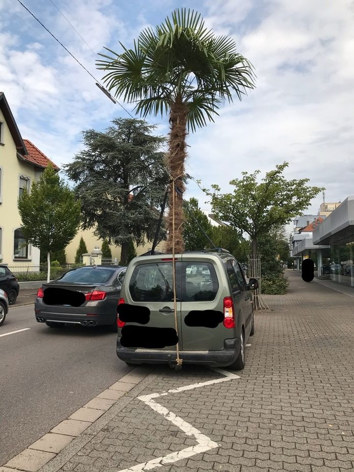 Peugeot Partner met open dak en exotische lading.