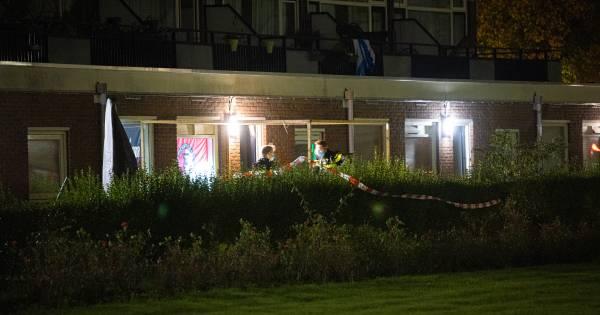 Overvallen man in Zwolle worstelt aanvaller zijn woning uit: 'Hij stond ineens met wapenstok voor de deur' .