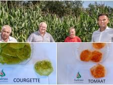 Krokante courgette en zelfs drop: Deze uitvinding kon snacken weleens compleet veranderen