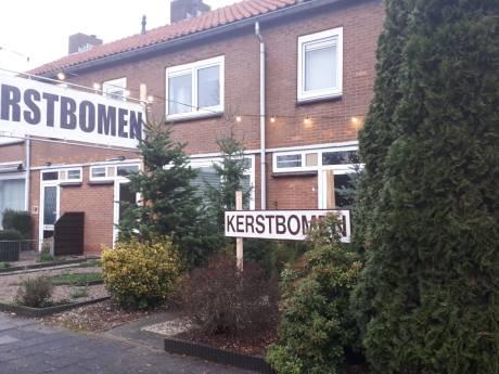 Kerstboomverkopers Van Heemstraweg aan het woord: 'Verser kan niet, Maas en Waalse grond is goed'
