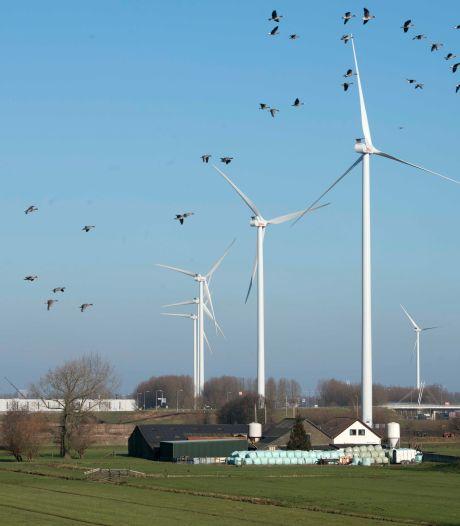 Verzet op Heuvelrug groeit tegen windmolens die tweemaal zo hoog als Domtoren zijn