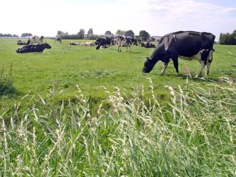 Groenfonds helpt boeren met subsidie