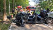 Zwangere vrouw zwaargewond na klap tegen boom, haar twee jonge kinderen komen er met lichte verwondingen vanaf