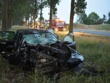 Auto ramt boom langs A15 bij Bemmel, bestuurder gewond