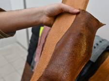 Utiliser les peaux de poisson pour en faire du cuir, l'idée qui allie luxe et écologie