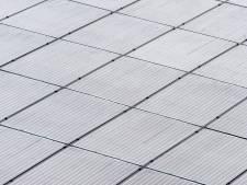 Plan voor zonnepark op landgoed Quadenoord verdeelt Renkum