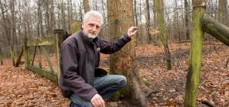 Kroondomein-discussie met Harry Voss in Andere Tijden
