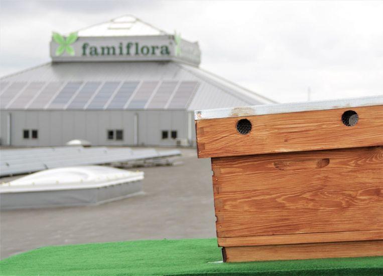 De bijenkasten staan op het dak van Famiflora.