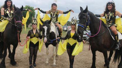 The Goddess Girls bestijgen het paard bij stal Darley Angel