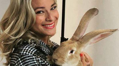 """An Lemmens roept Vlaming op om geen konijn meer te eten: """"Ook al proberen ze je te overtuigen van het tegenovergestelde"""""""