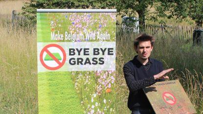 """Leuven tekent ByeByeGrass Charter en gaat voor weelderige bermen: """"Gemaaid gazon heeft geen meerwaarde tijdens droogte"""""""