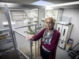 Nachtmerrie voor Hannie (73) uit Losser na diefstal van haar 33 vogels